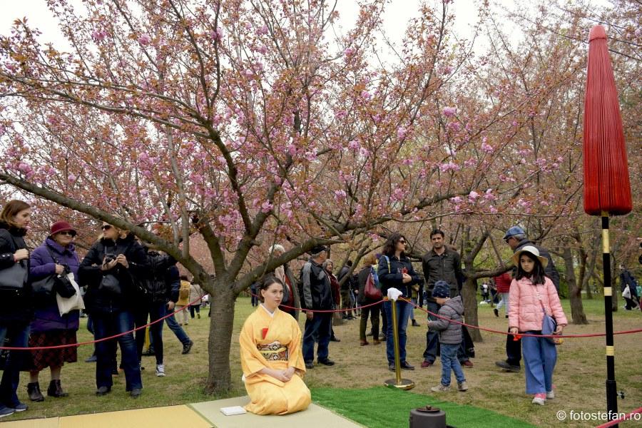 poza fata kimono ceremonia ceaiului bucuresti