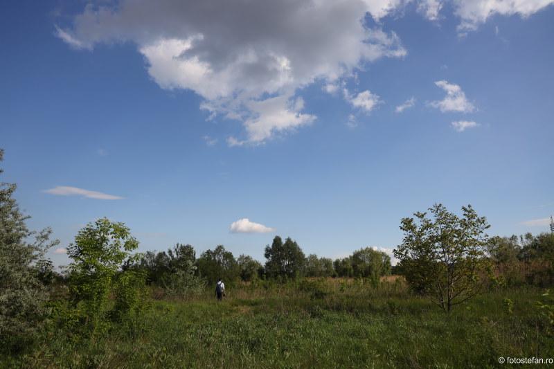 fotografii parcul natural cavaresti delta bucuresti