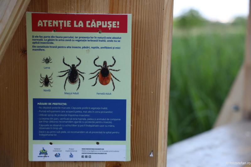poza afis avertizare capusi parcul vacaresti delta bucurestiului
