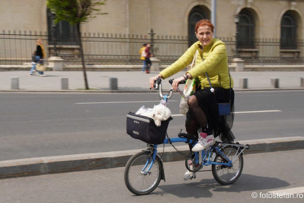 panning biciclista calea victoriei bucuresti
