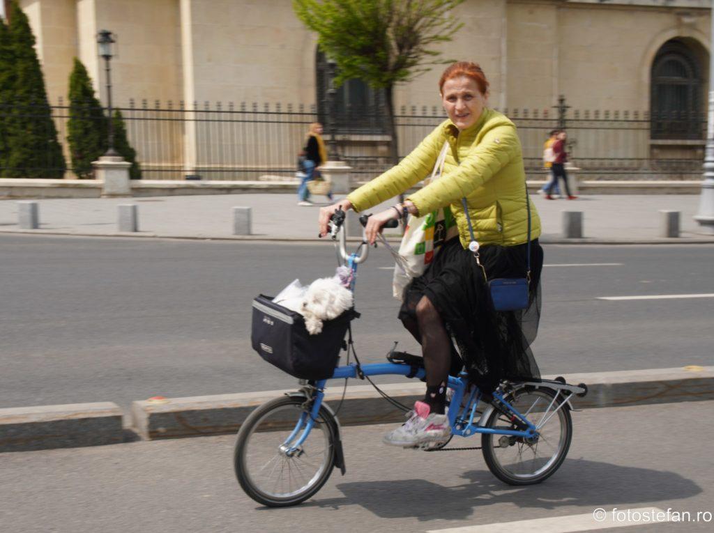 poza bicicleta Brompton cos catel