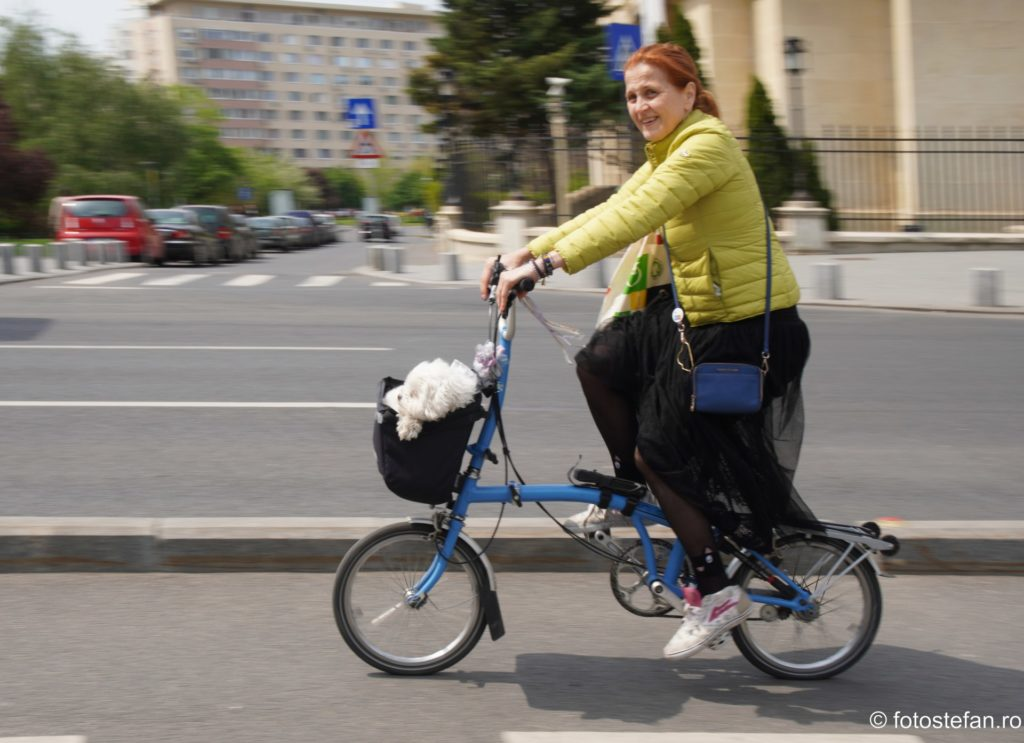 poza biciclista Brompton romania catelus
