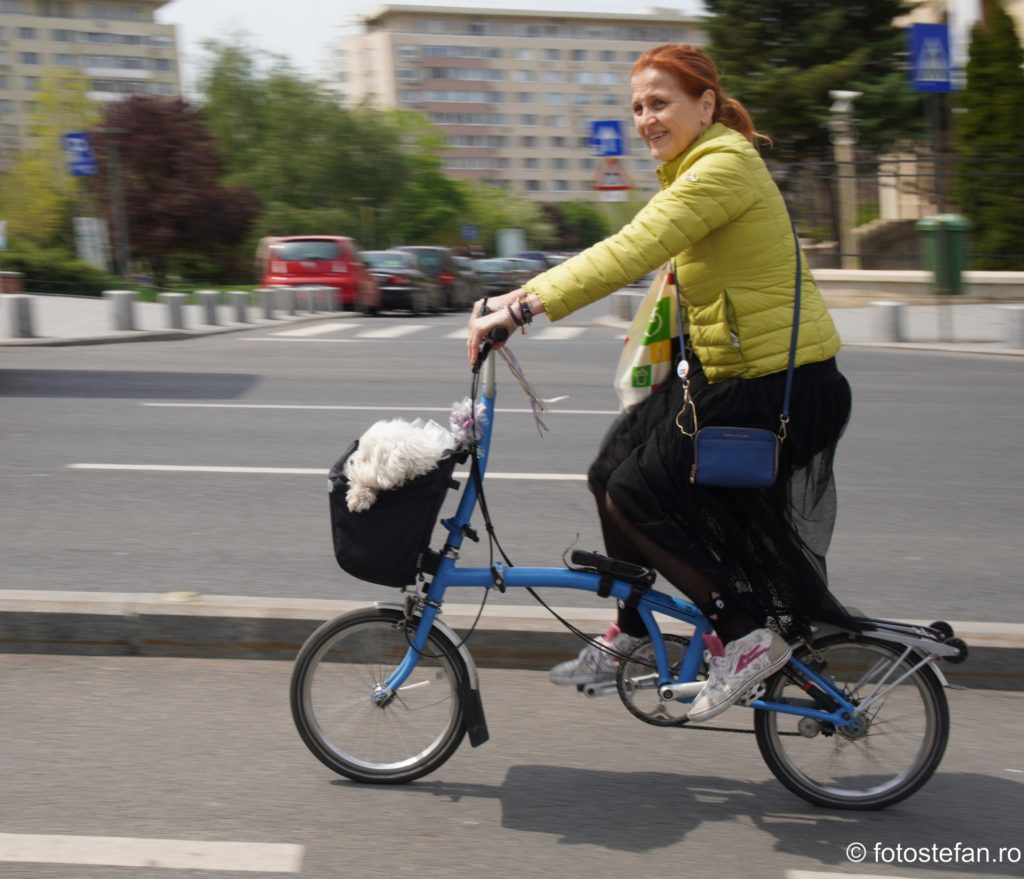 poza biciclista cu catel bucuresti romania