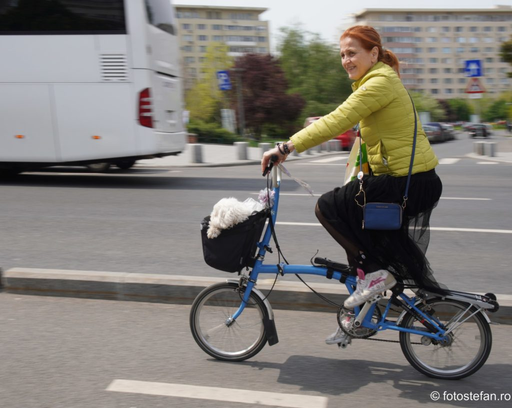 poza biciclista plimbare catel bucuresti romania