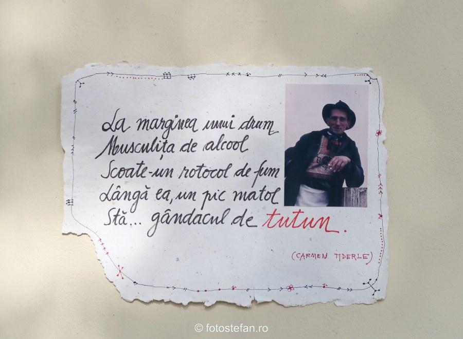 poza taran roma costum popular poezie
