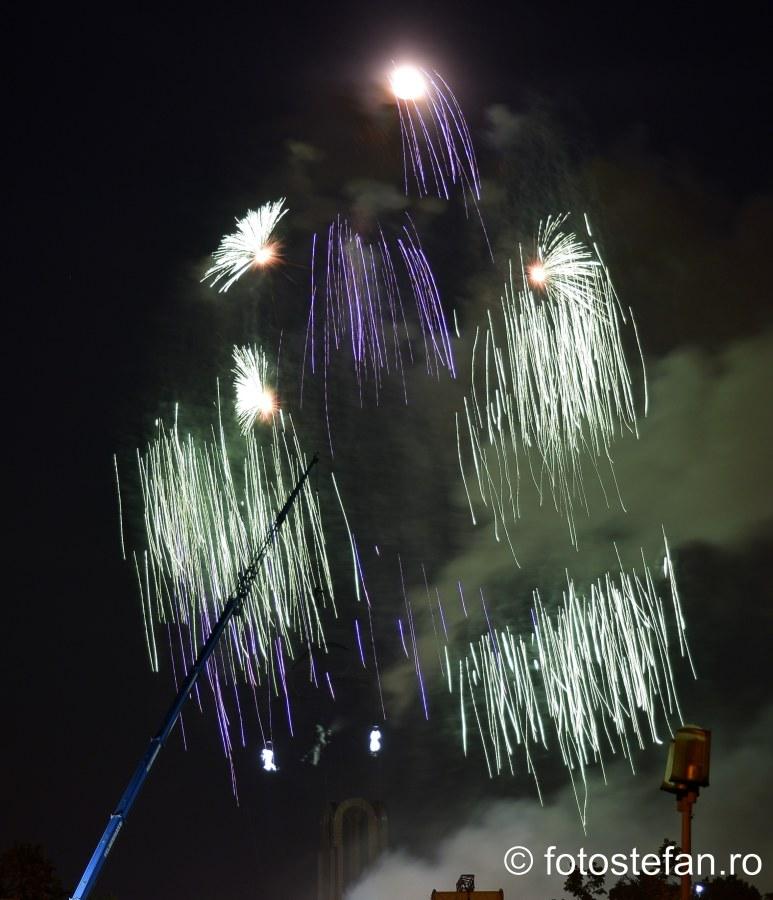 fotografii artificii bucuresti parcul carol ziua frantei