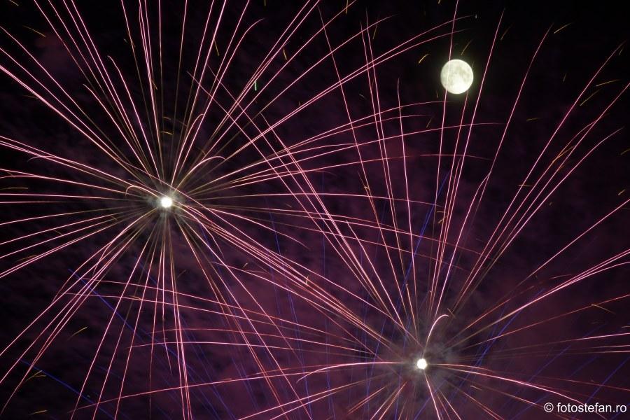 Ziua Frantei Bucuresti imagini poze artificii parcul Carol