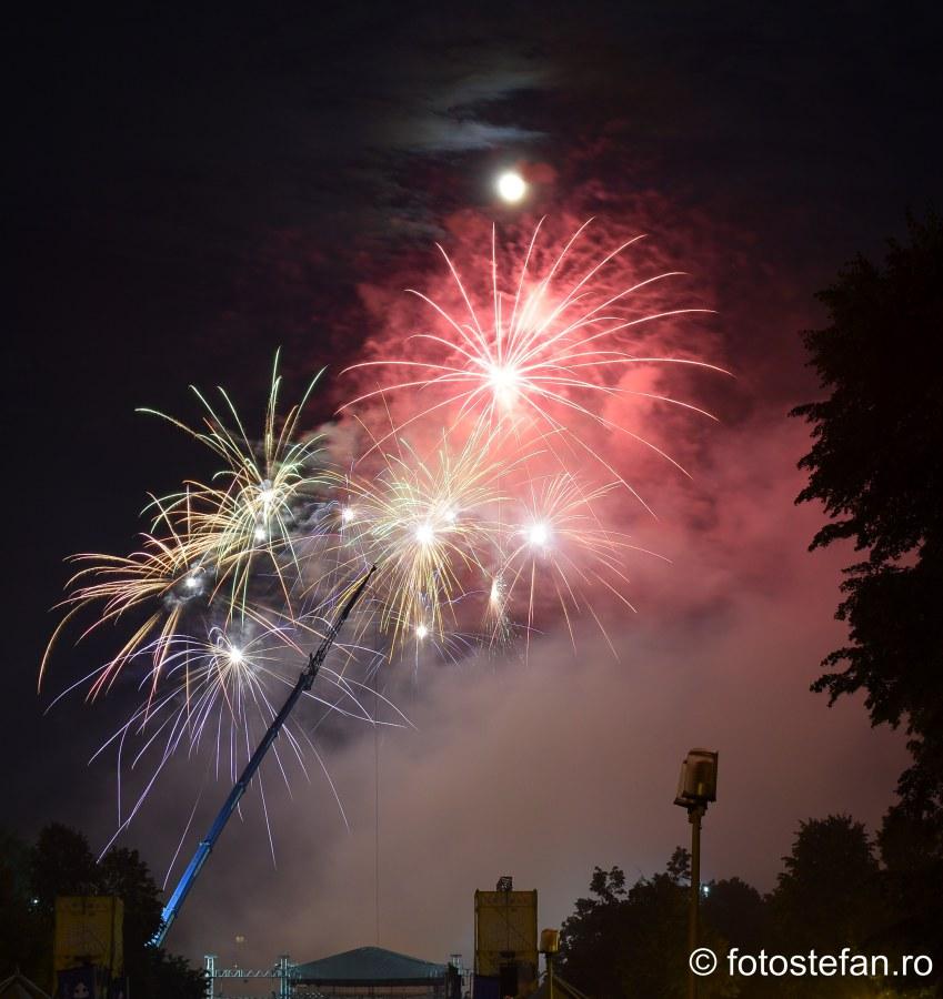 Ziua Frantei Bucuresti imagini artificii parcul carol
