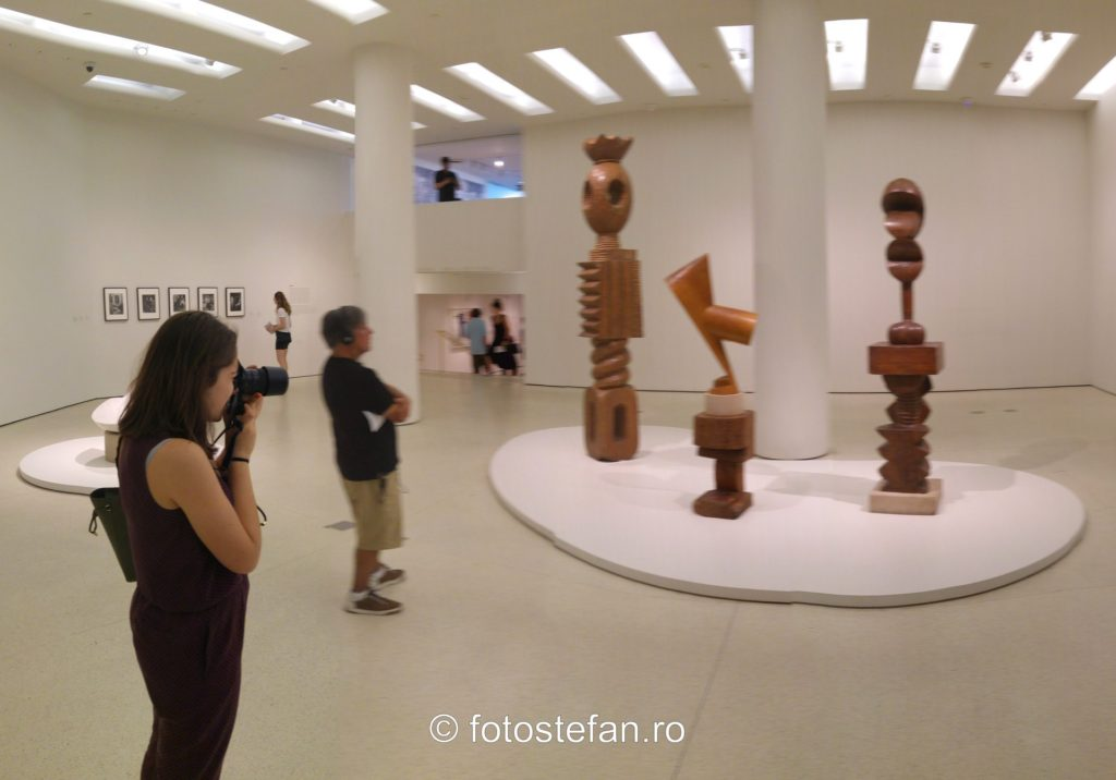 poza fotografa sculpturi constantin brancusi muzeul Solomon R. Guggenheim