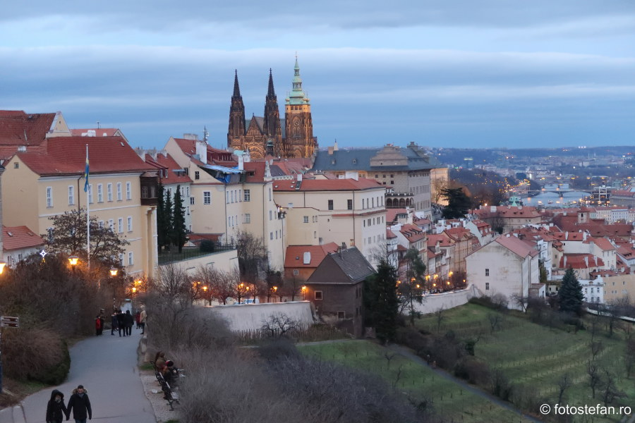 poze Praga vazuta de sus castel catedrala vitus