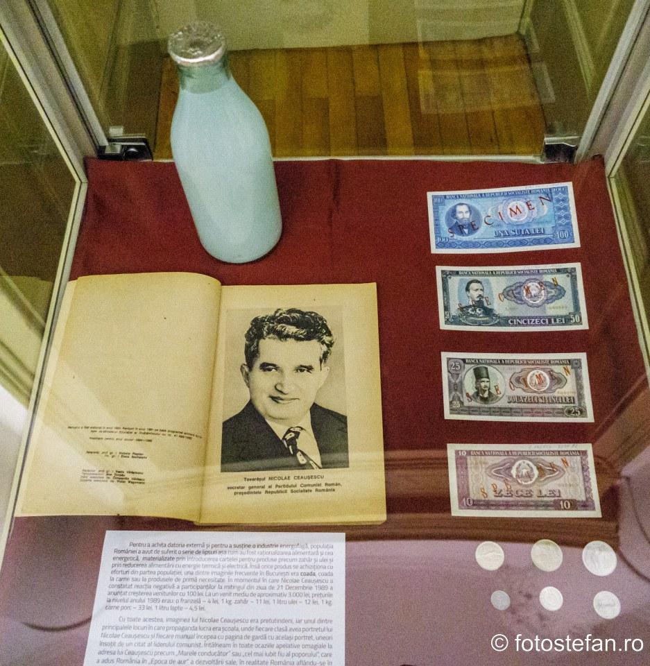 poza sticla lapte ceasusescu comunism