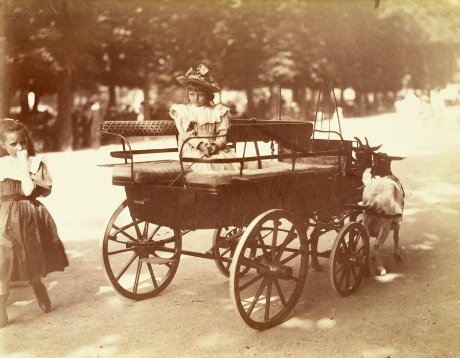 fotografie istorica gratuita Paris Musees fetita trasura capre