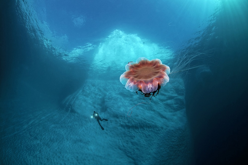 fotografie subacvatica scafandru mare apa albastra