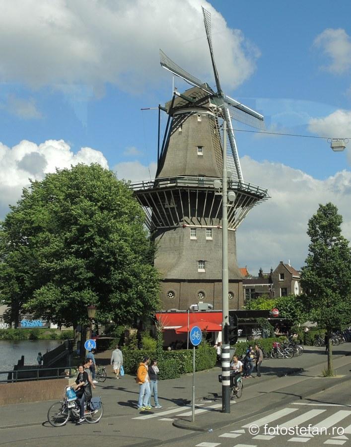 poza moara de vant Locuri de vizitat in Amsterdam