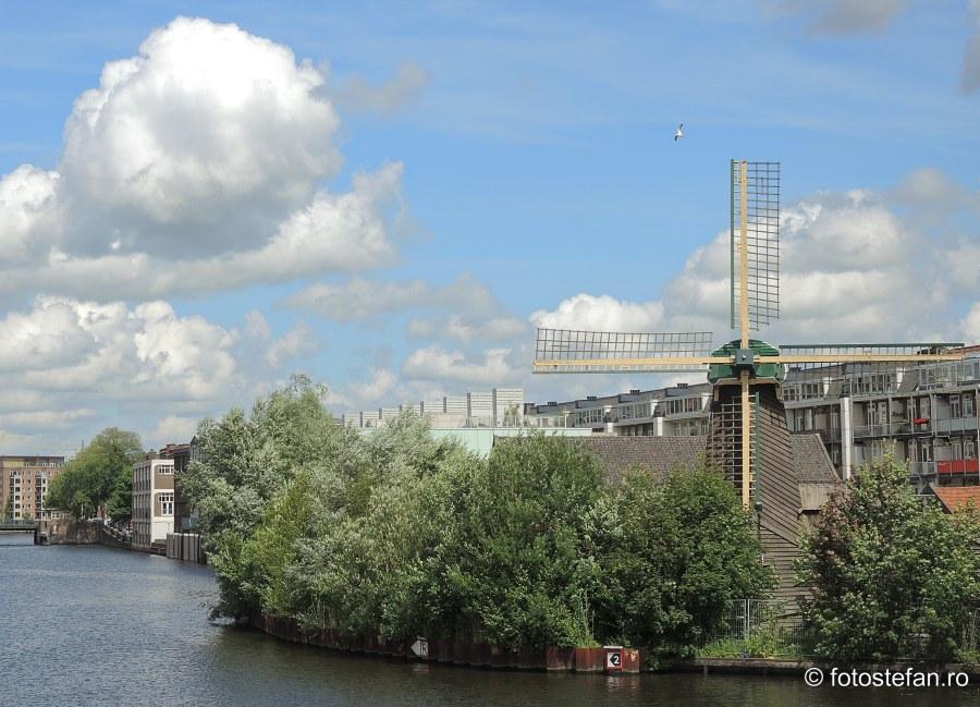 fotografie moara de vant amsterdam beltbrug