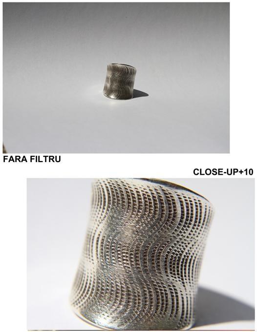 poza macro Filtrele close-up +10 dioptri