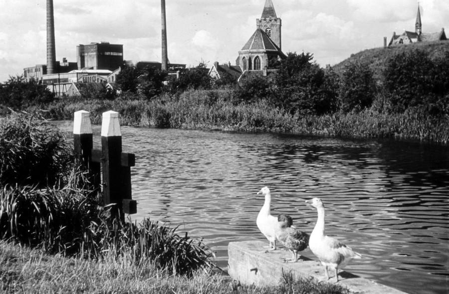 document istoric fotografie veche oras olandez gaste