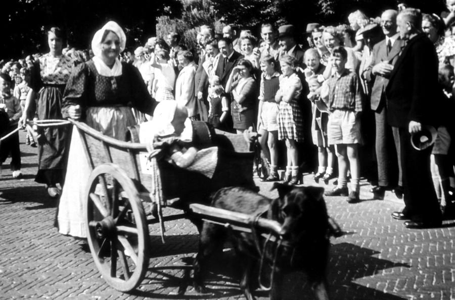 obieciuri olandeze muiden orasele de vizitat langa Amsterdam