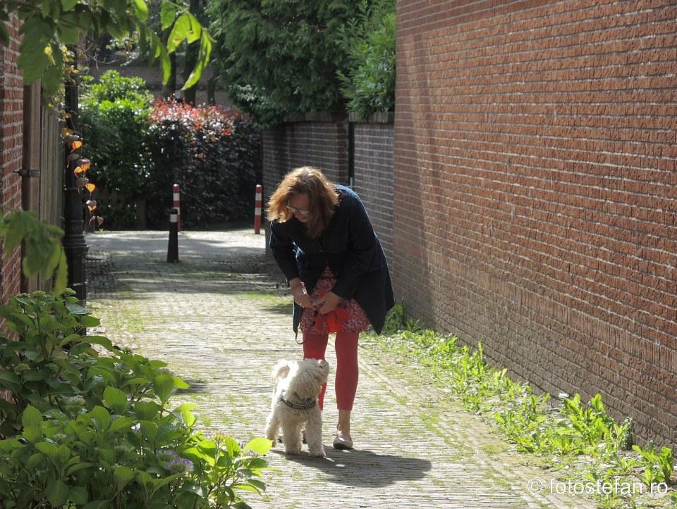 poza fata olandeza plimba catel oras locuri de vizitat langa Amsterdam