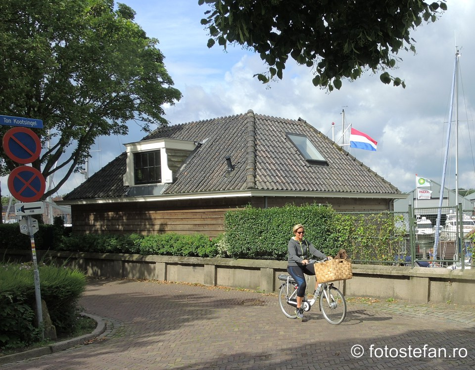 plimbara catel bicicleta olanda fotografie turistica