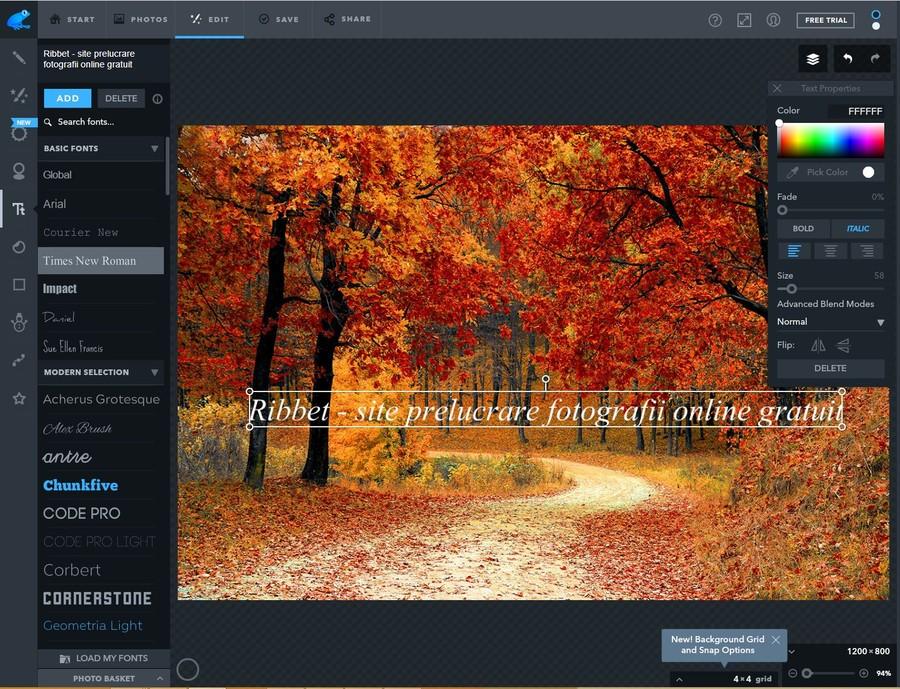 ribbet site prelucrare fotografii online gratis