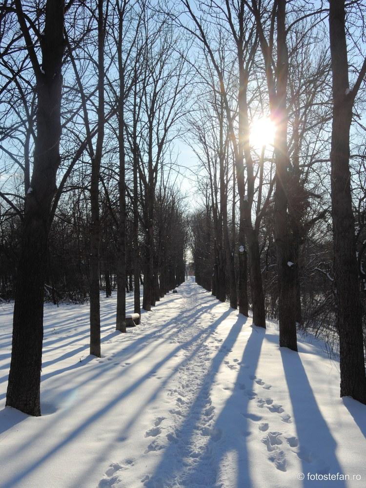 zapada iarna alee parcul Giuseppe Verdi bucuresti