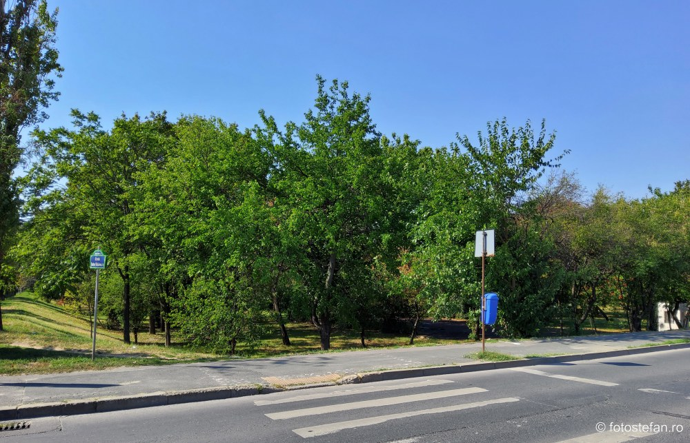 fotografii video parcul verdi bucuresti sector 2