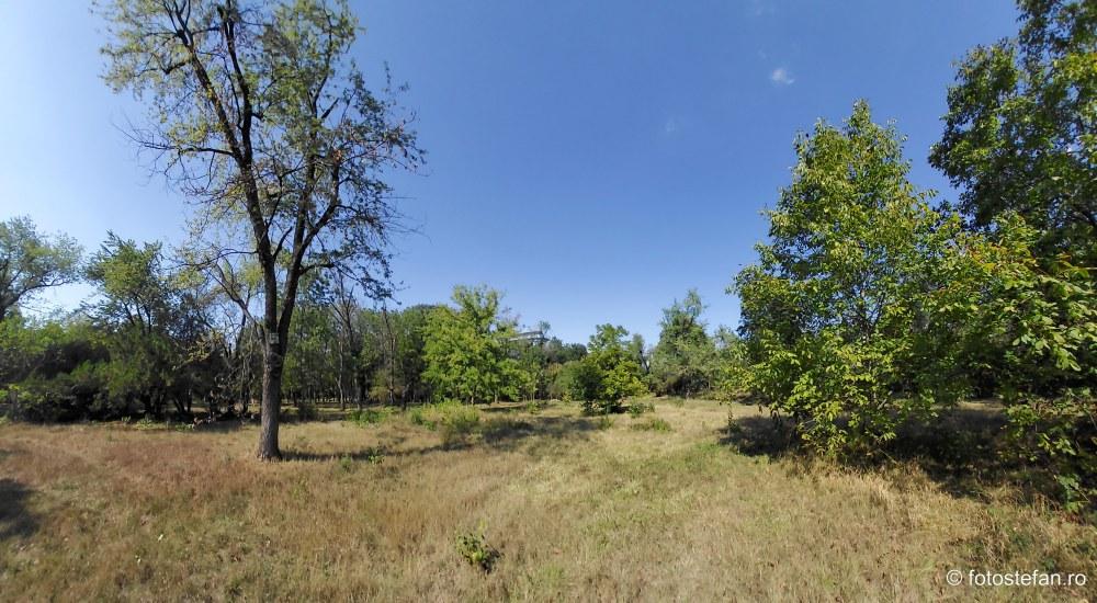 vedere parc neingrijit bucuresti sector 2 fotografii