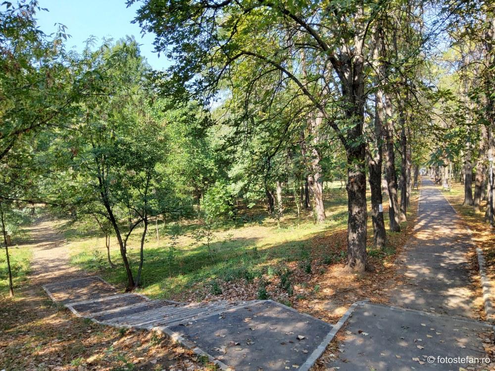 fotografie alei parc cartier floreasca sector bucuresti