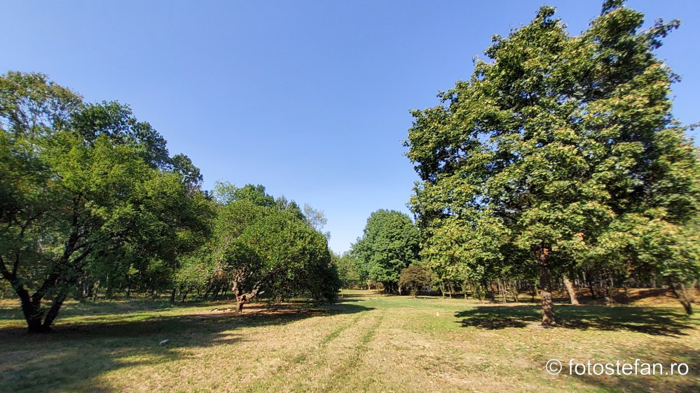 parcul verdi cartier floreasca sector 2 bucuresti poze