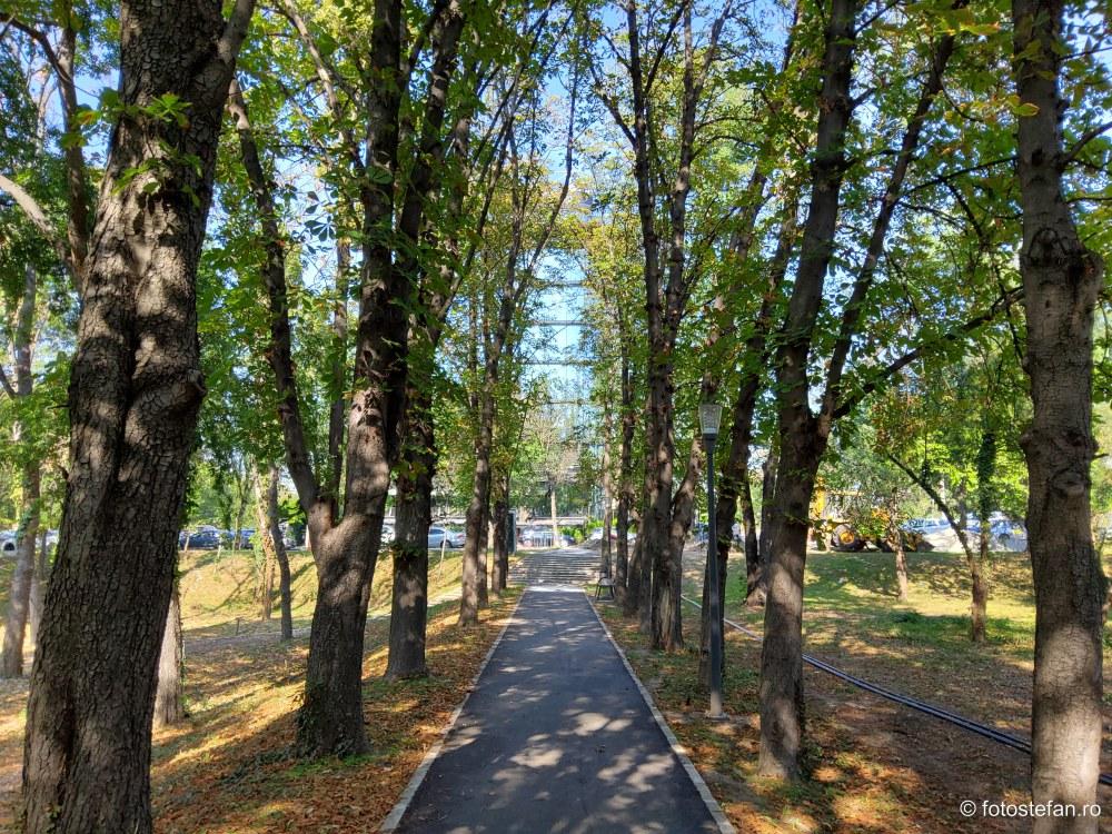 poza alee asfaltata parcul verdi bucuresti floreasca
