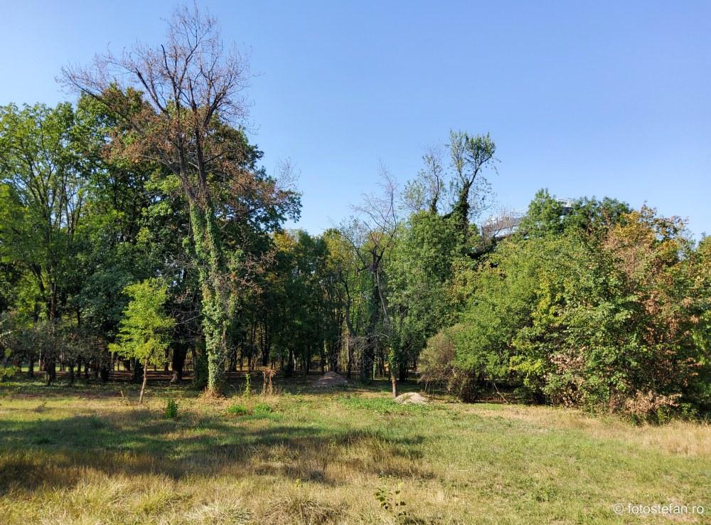imagini foto video parcul Giuseppe Verdi bucuresti