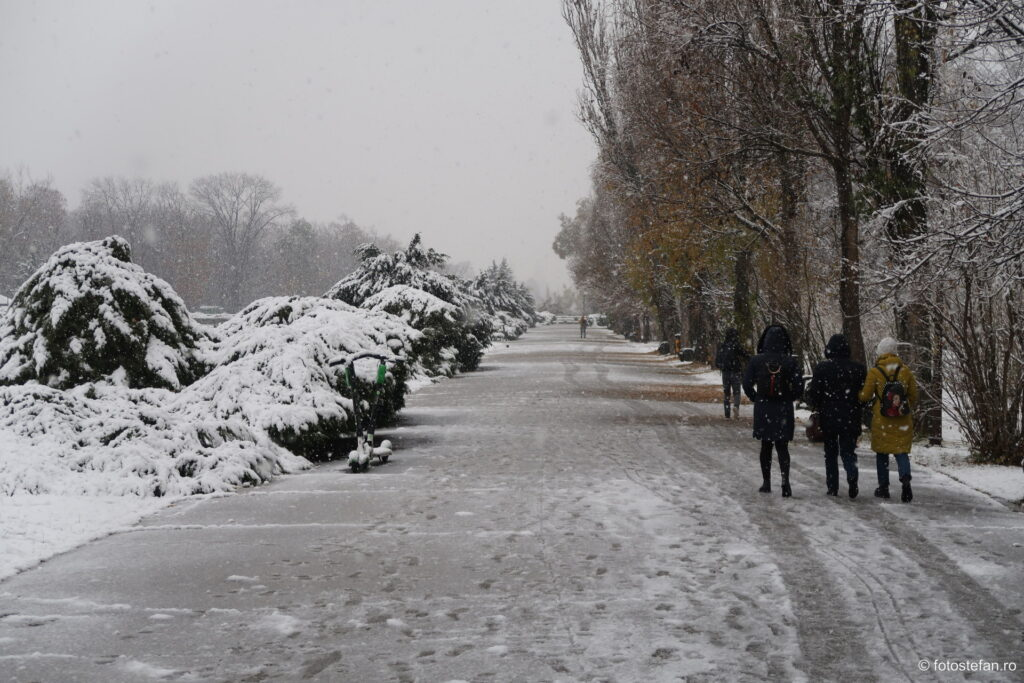 Sony ZV-1 vs Canon G7 X Mark II iarna ninsoare