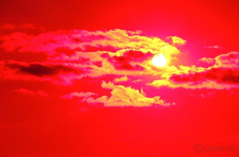 poza efect filtru color aparat foto compact nikon