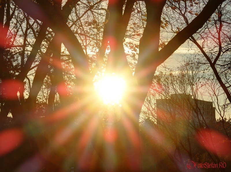 foto raze soare apus starburst sunset