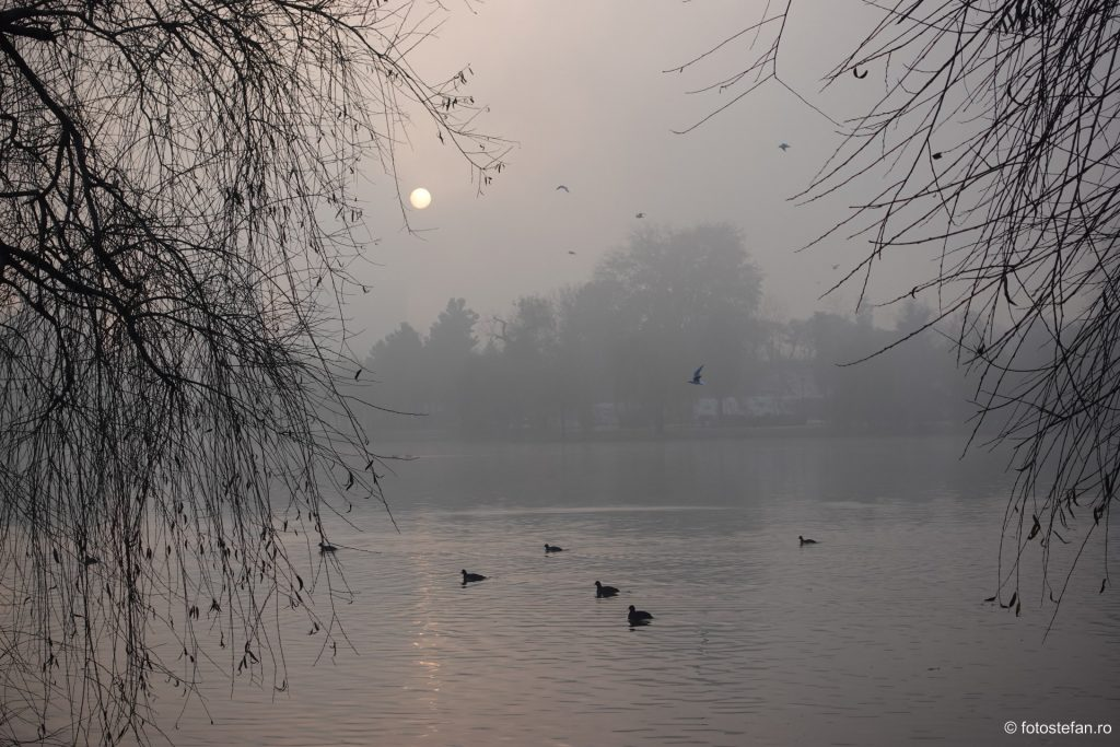 Fotografierea apusului de soare ceata lac titan bucuresti parc ior