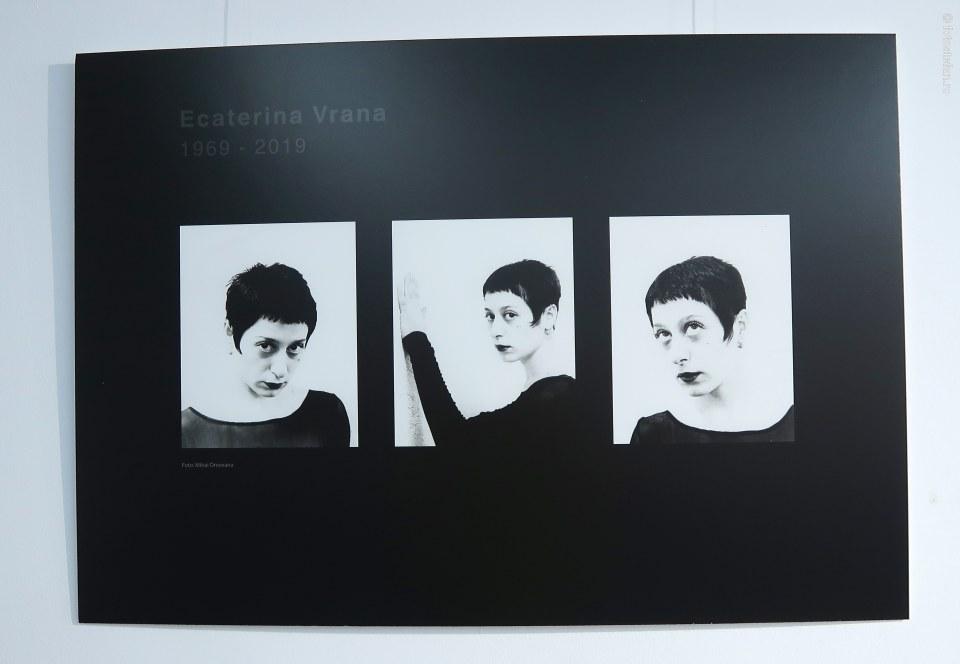 poza portret Ecaterina Vrana artista pictorita