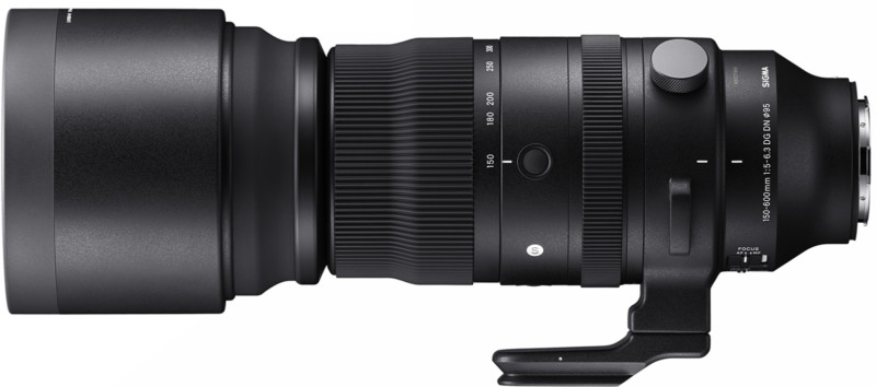 poza Sigma 150-600mm f/5-6.3 DG DN OS Sports zoom mirrorless sony panasonic