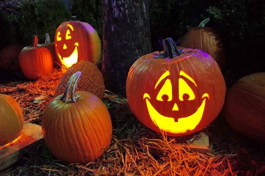 sugestii echipamente foto-video pentru fotografii de Halloween